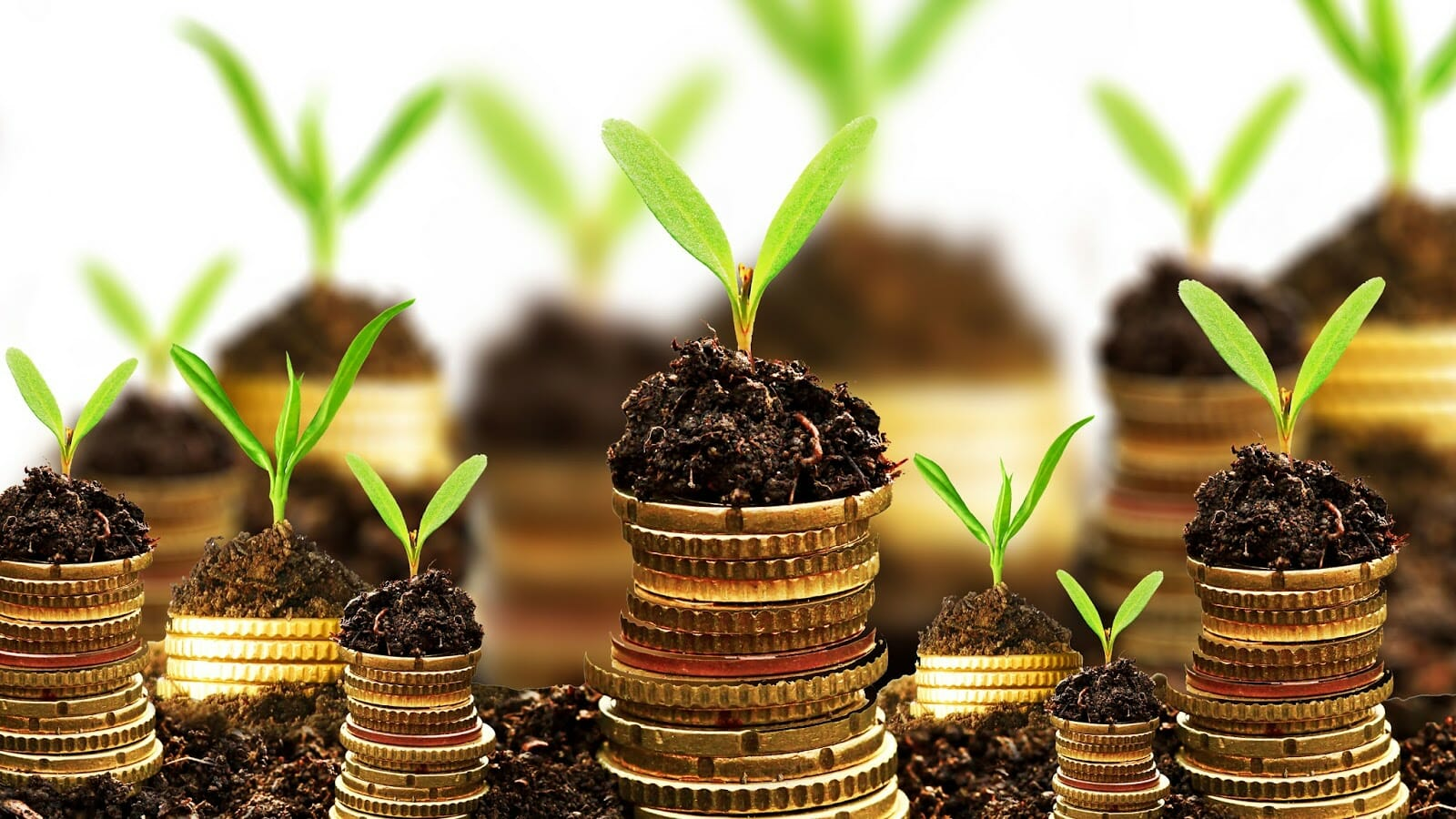 How to grow businesses in Ghana